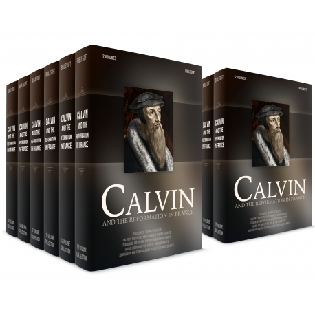 Calvin and the Reformation in France
