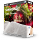Sermon Gift Bundle 2 - Spurgeon, Moody, Bonar, etc