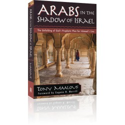 Arabs in the Shadow of Israel
