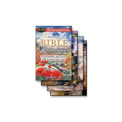 The Bible Illustrations Series (4 vol.)