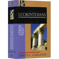 Baker Exegetical Commentary on 1 Corinthians